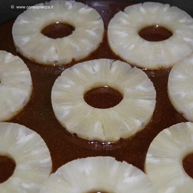 t_ananas3